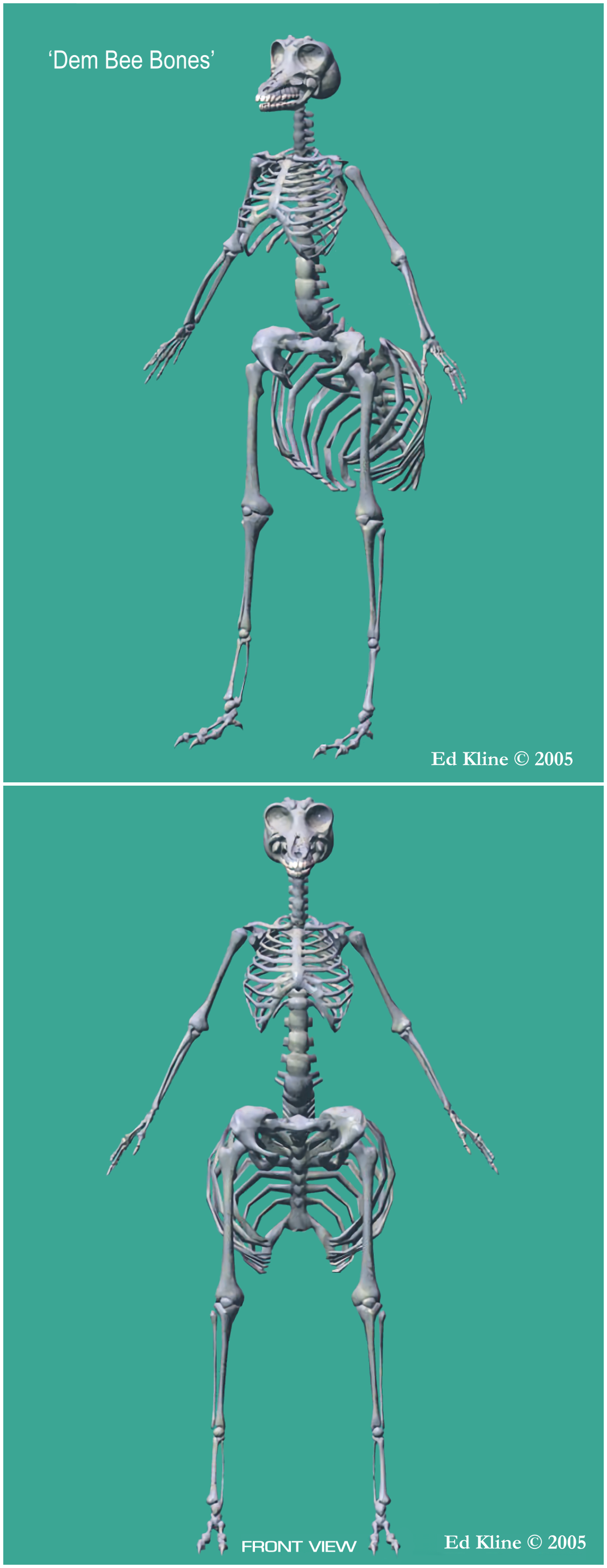 Dem Bee Bones - front left and front views
